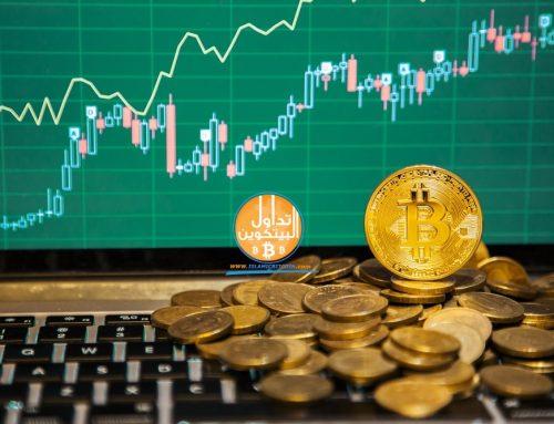 عملة البيتكوين كاش تنخفض 5 في مائة في سوق العملات الرقمية مقابل الرموز المميزة في السوق