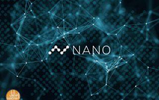 شبكة النانو