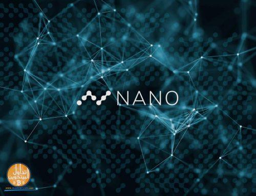 ما هي شبكة النانو؟ دليل المبتدئين في عام 2021